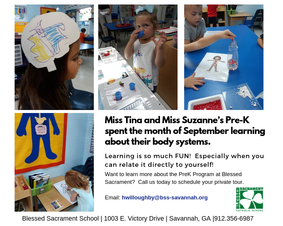 PreK learns about their body systems. Learning is FUN at Blessed Sacrament School!